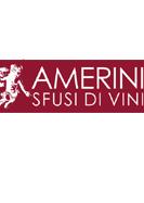 Progetto: Amerini Sfusi di vini
